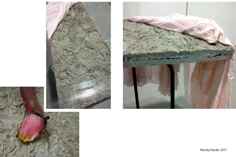 Wendy Hardie 'underside' 2011  (cement, silk, glass, rhubarb, steel)