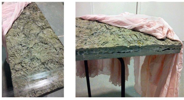wendy hardie 2011 'underside (cast concrete, cabbage, glass, silk, steel)'
