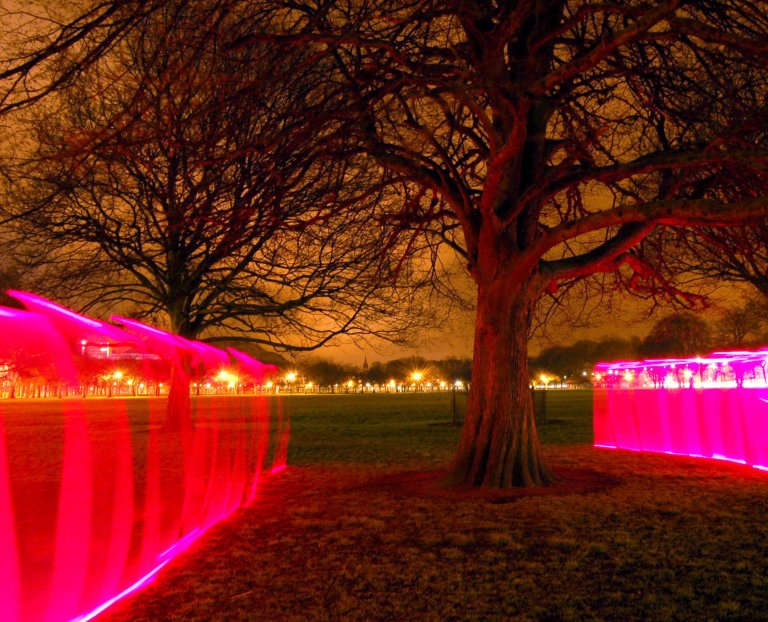 Light Art by artist Wendy Hardie 'Envelop, 2005- 06' is the formation of a pink enclosure of light around a Horse Chestnut Tree.